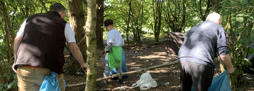 Cleaning up the wooded areas